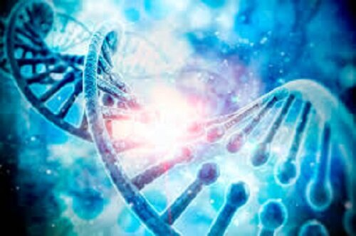 Global Regenerative Medicine Market 2019 Current Analysis: Getinge, Hill-Rom, Skytron, STERIS