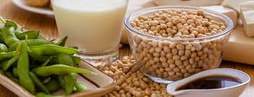 Global Soy Food Products Market 2019 – ADM, Cargill, DuPont, Northern Soy, Whole Soy, The Scoular Company